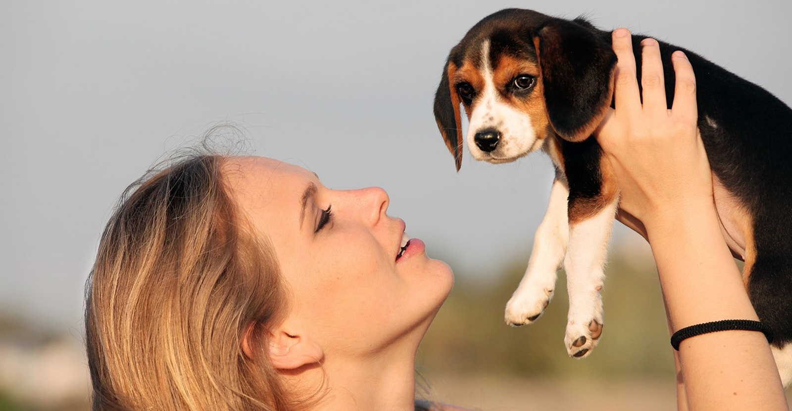 Frau hält ein Hundewelpen